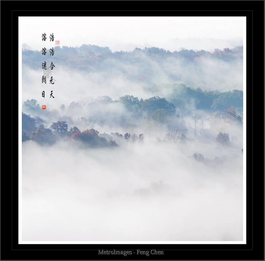 【风】雾里赏枫