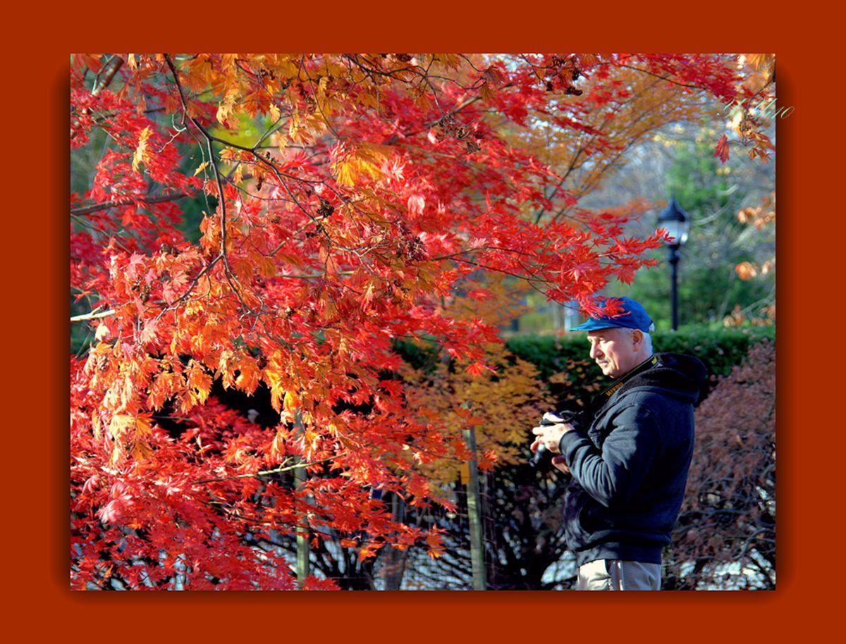 【原创】赏秋的人们(摄影)_图1-20