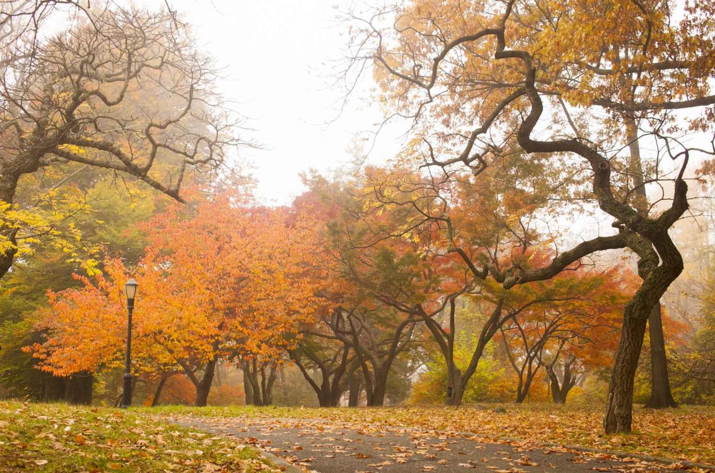[爱摄影] 深秋的美(2)_图1-12