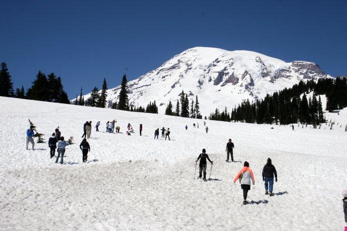美国雷尼尔山滑雪场掠影(图)