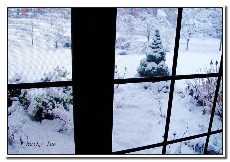 【小虫摄影】感恩节的大雪_图1-2