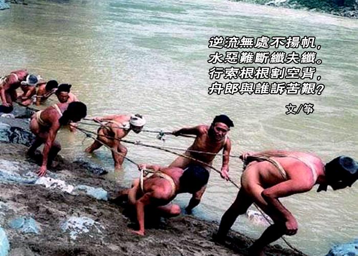 【弦逸筝情】纤夫图.和石-头,岩云野鹤,无痕雪_图1-3