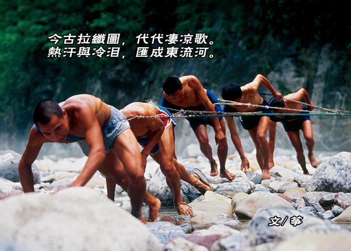 【弦逸筝情】纤夫图.和石-头,岩云野鹤,无痕雪_图1-7
