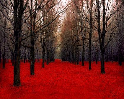 《秋天的暗色调》_图1-3