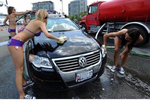 美国【大象\比基尼美女\机器】洗车的不同价格_图1-15