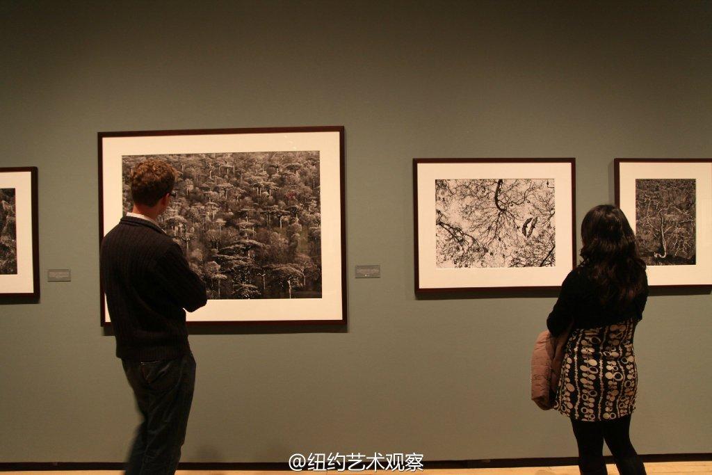 国际摄影中心的震撼黑白大片_图1-18