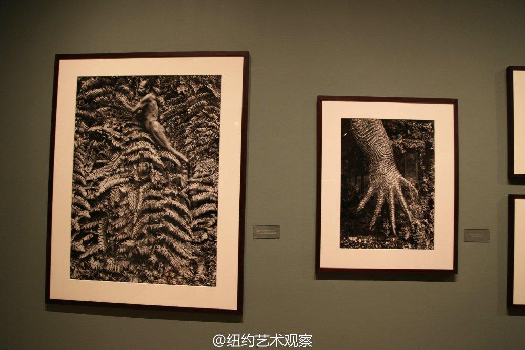 国际摄影中心的震撼黑白大片_图1-17