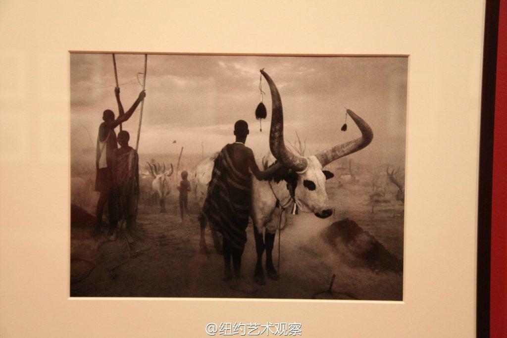 国际摄影中心的震撼黑白大片_图1-13