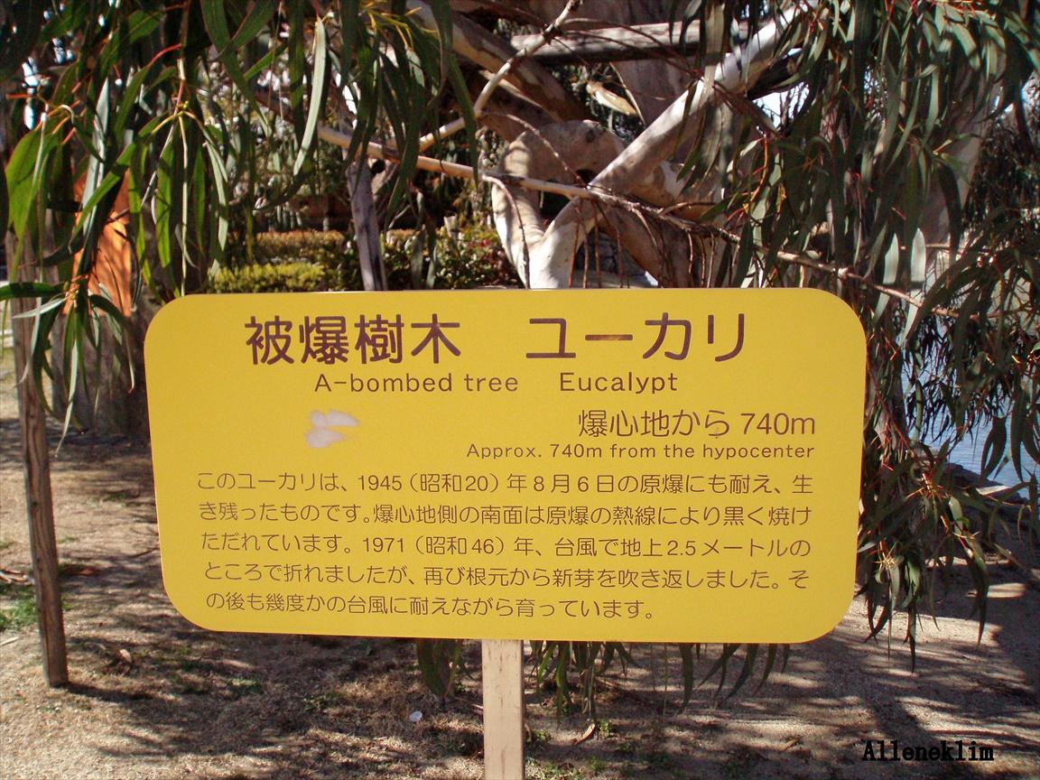 Alleneklim-日本广岛_图1-19