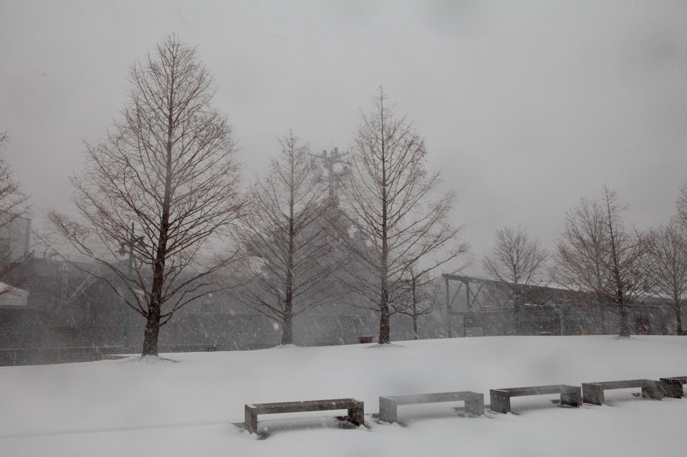 河岸公园看暴雪初起150126下午