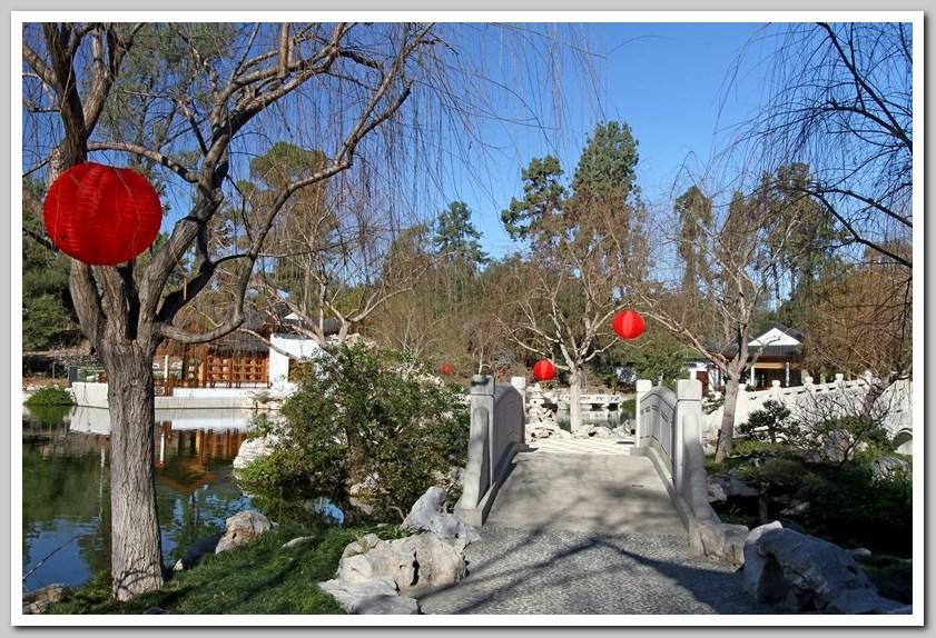 红灯笼高高挂,中国园里迎新年_图1-8