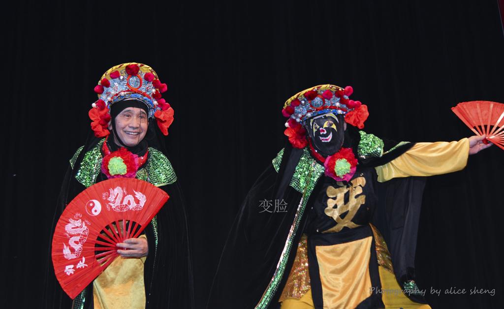 2015 新春庙会_图1-9