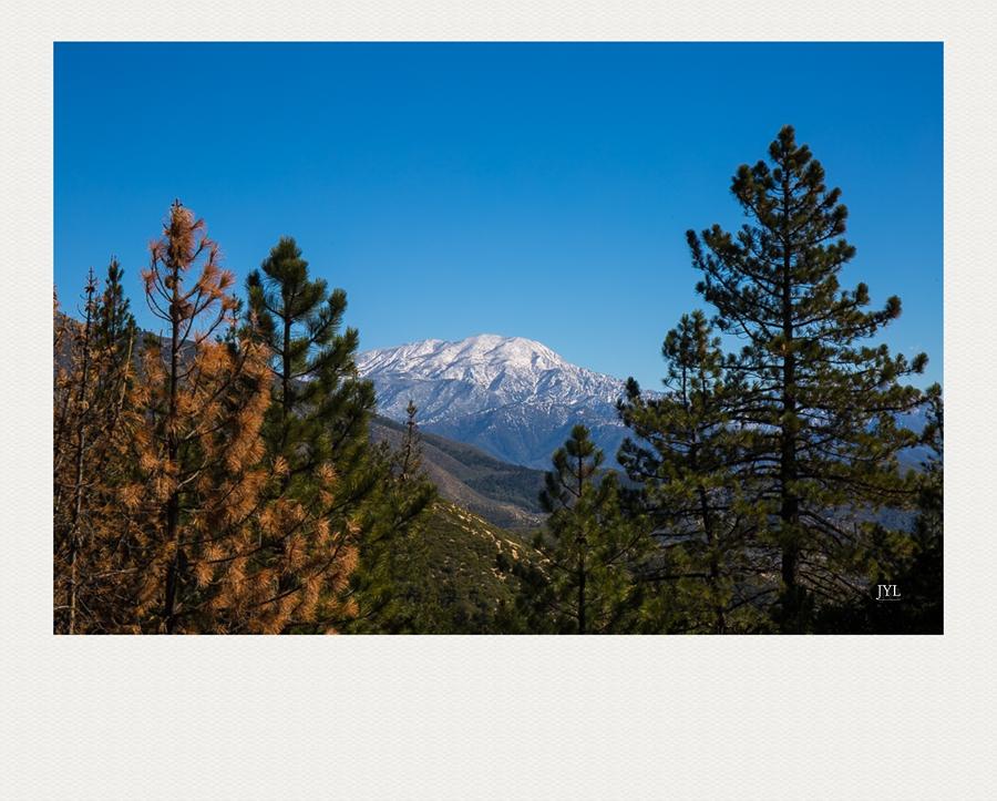 边走边拍,山上看雪_图1-2