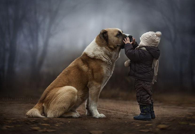 【攝影蟲】媽媽攝影師的孩子成長日誌____Elena Shumilova_图1-5