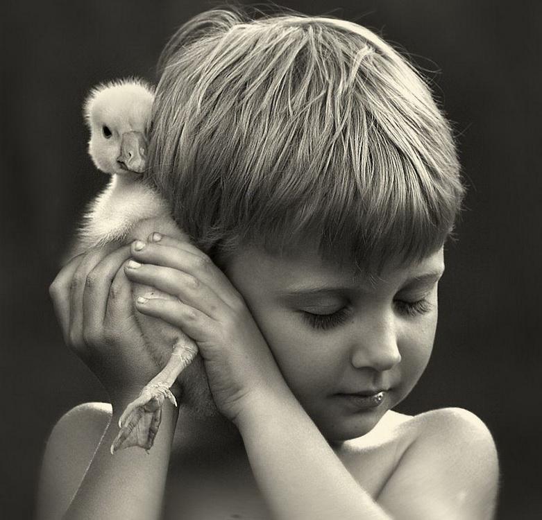 【攝影蟲】媽媽攝影師的孩子成長日誌____Elena Shumilova_图1-16