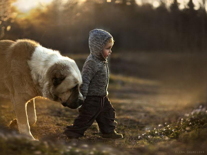 【攝影蟲】媽媽攝影師的孩子成長日誌____Elena Shumilova_图1-18