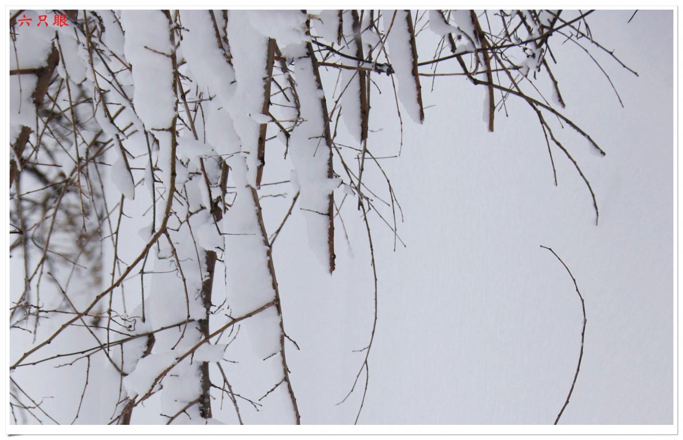 六只眼:好雪迎春来_图1-8