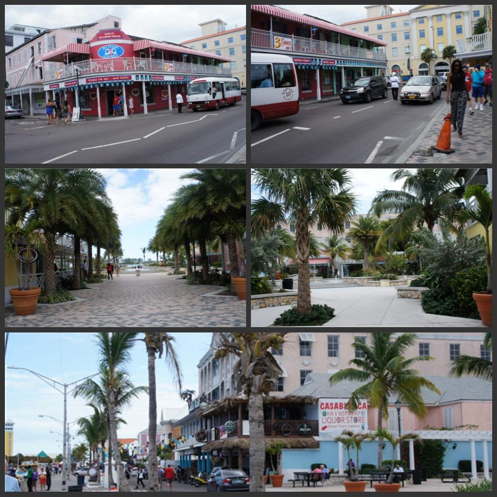 迈阿密至巴哈马----游轮之旅(六)_图1-11