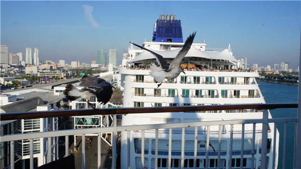 迈阿密至巴哈马---邮轮之旅(后记)_图1-21