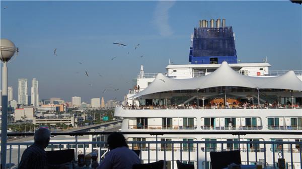 迈阿密至巴哈马---邮轮之旅(后记)_图1-22