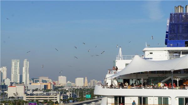 迈阿密至巴哈马---邮轮之旅(后记)_图1-23