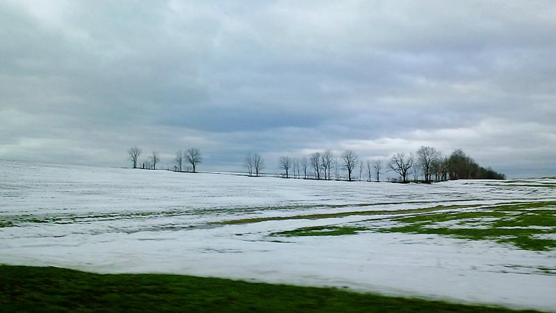 周末去宾州观雪雁、一路随拍与你分享_图1-21