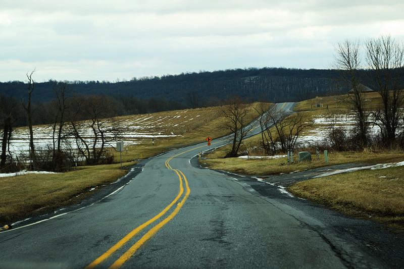 周末去宾州观雪雁、一路随拍与你分享_图1-22