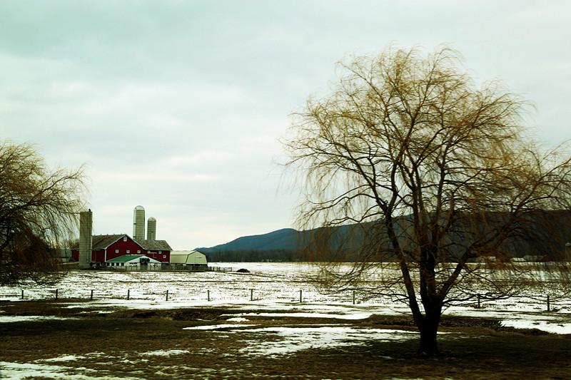 周末去宾州观雪雁、一路随拍与你分享_图1-25