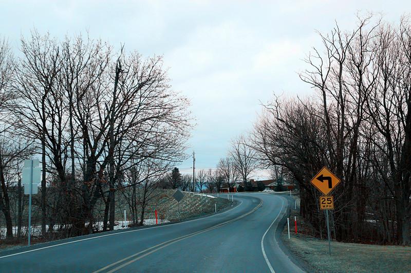 周末去宾州观雪雁、一路随拍与你分享_图1-26
