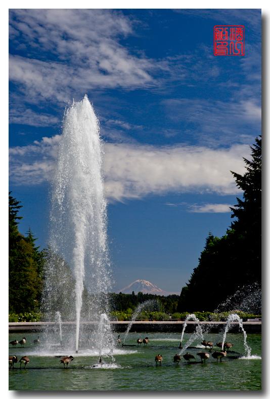 《酒一船摄影》:雷尼尔山国家公园行_图1-5