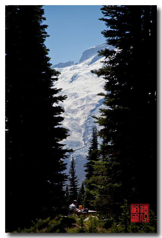 《酒一船摄影》:雷尼尔山国家公园行_图1-15