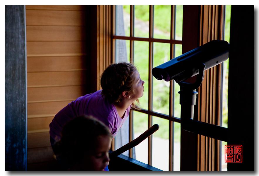 《酒一船摄影》:雷尼尔山国家公园行_图1-18