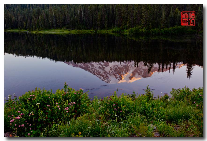 《酒一船摄影》:雷尼尔山国家公园行_图1-29