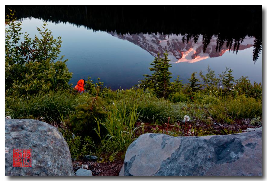 《酒一船摄影》:雷尼尔山国家公园行_图1-28