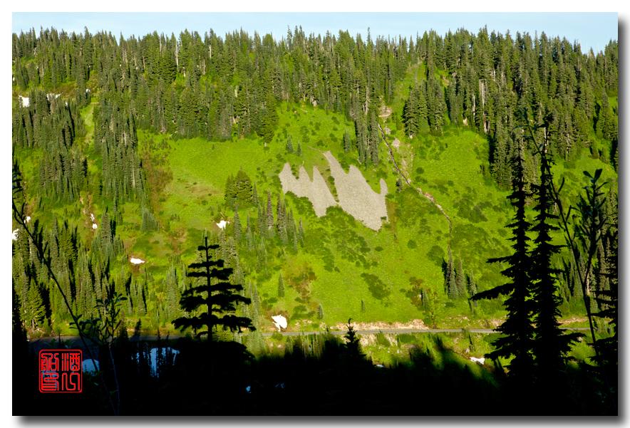 《酒一船摄影》:雷尼尔山国家公园行_图1-34