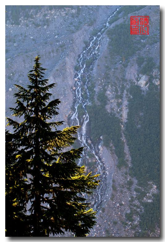 《酒一船摄影》:雷尼尔山国家公园行_图1-35