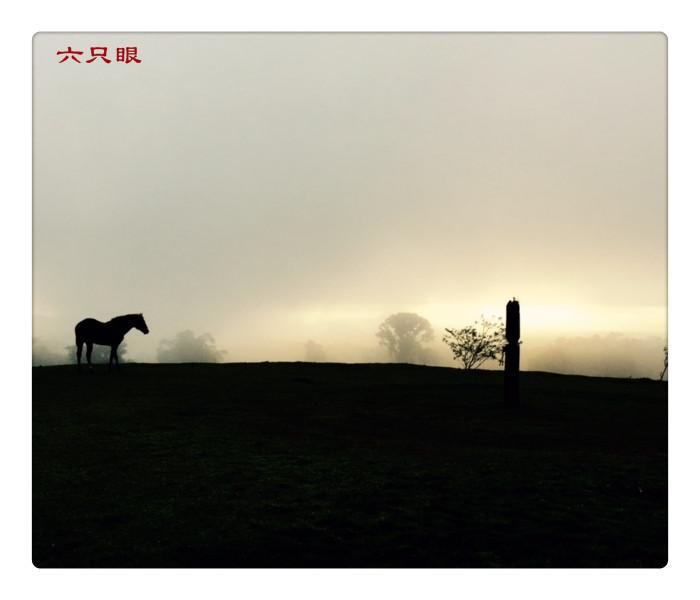 六只眼:晨与暮_图1-1