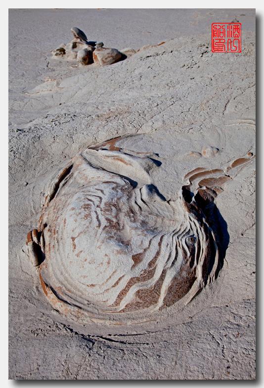 《酒一船摄影》:荒原寻蛋复活节_图1-4