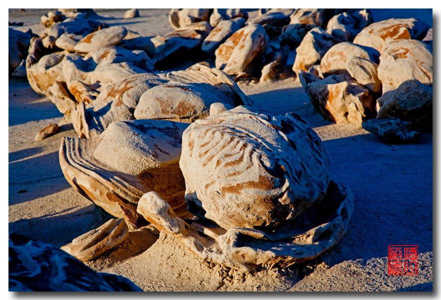 《酒一船摄影》:荒原寻蛋复活节_图1-20