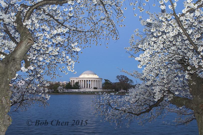 [海洋攝影] 2015年華盛頓DC櫻花節_图1-20