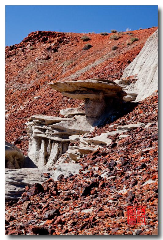 """《酒一船摄影》:惊艳北区""""必死台""""(Bisti Wilderness)_图1-13"""