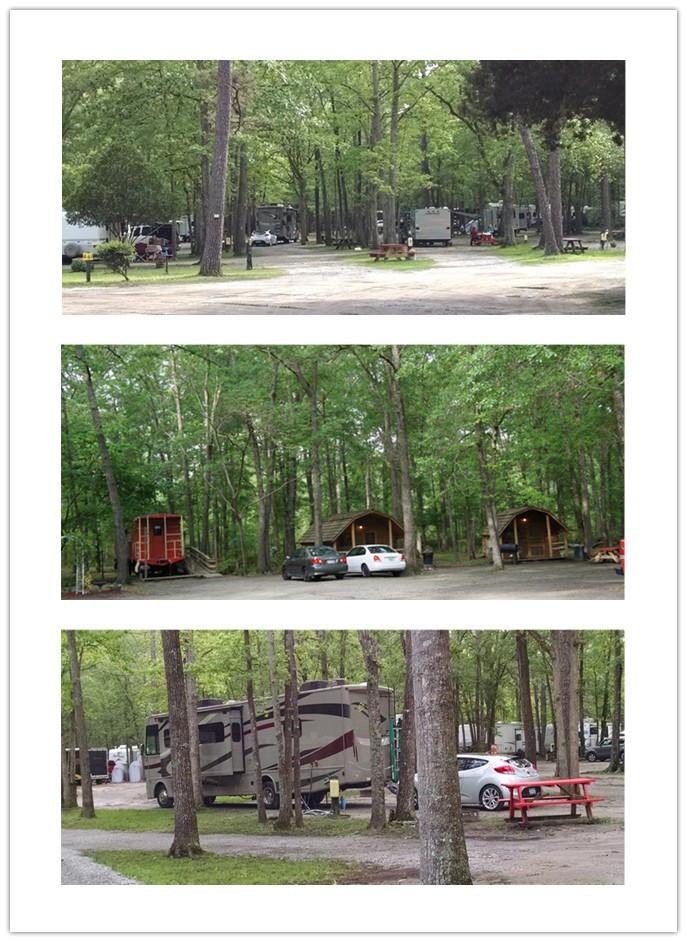 揭秘美国银发露营一族----Camping初体验(二)_图1-8