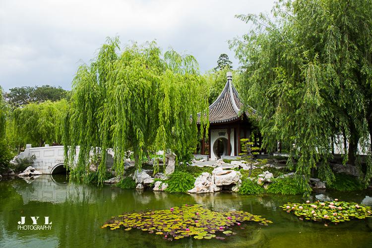北美最大的中国园林——流芳园_图1-8