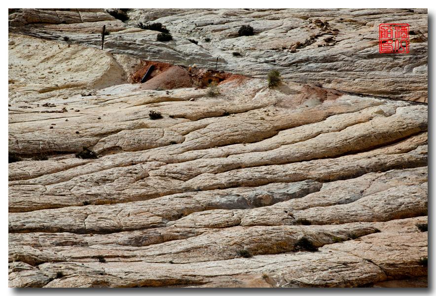 《酒一船摄影》:12号公路和圆顶礁国家公园 -  西行大环圈之八 ..._图1-6