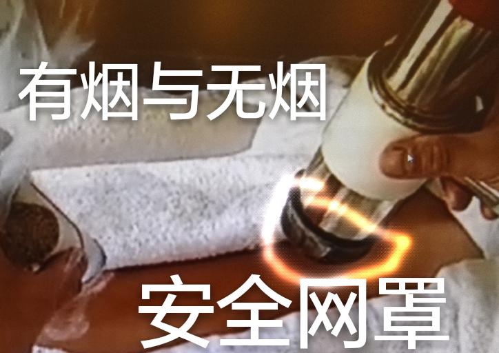 家庭实用无烟艾灸仪_图1-15