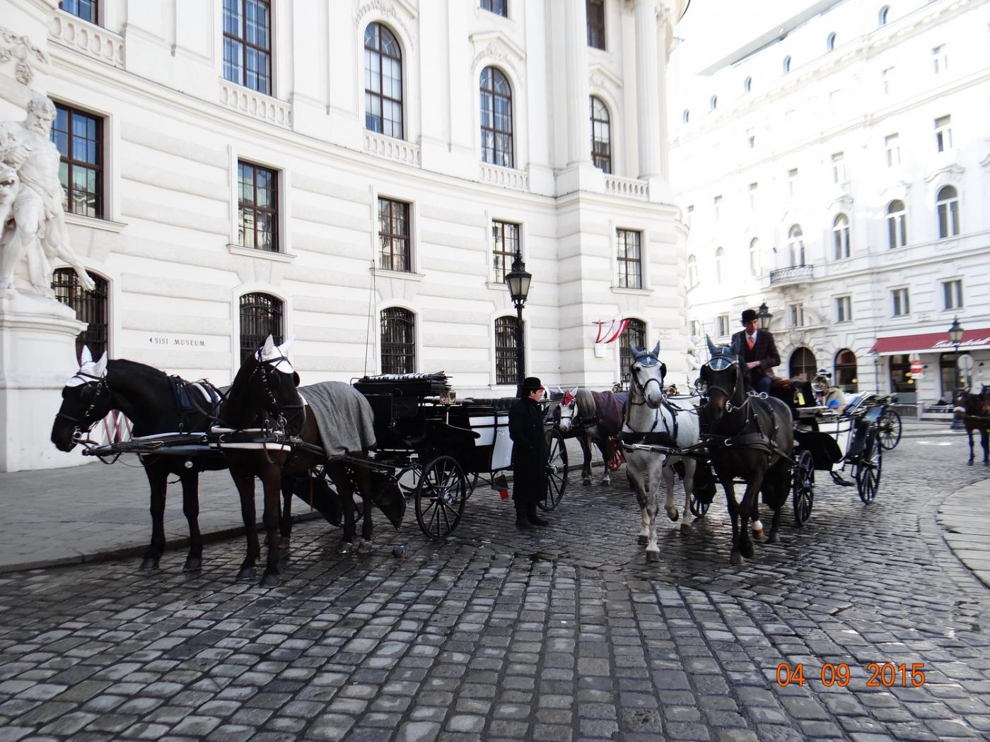 维也纳Vienna_图1-10