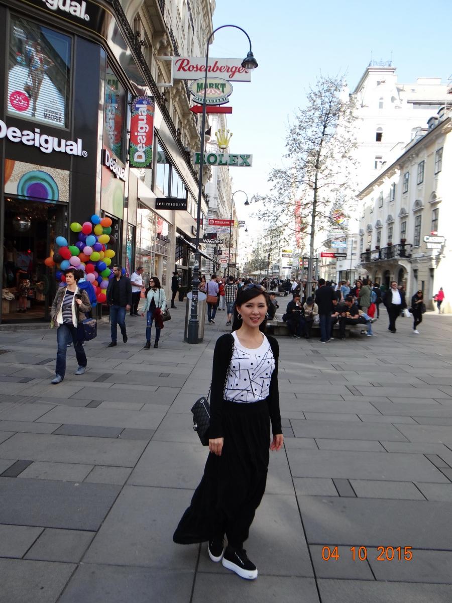 维也纳Vienna_图1-21
