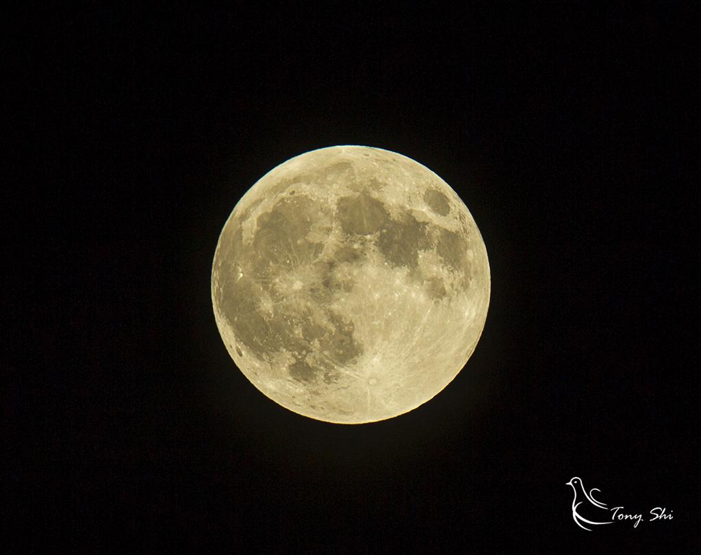 见证天文奇观【超级月亮+月全食】_图1-1