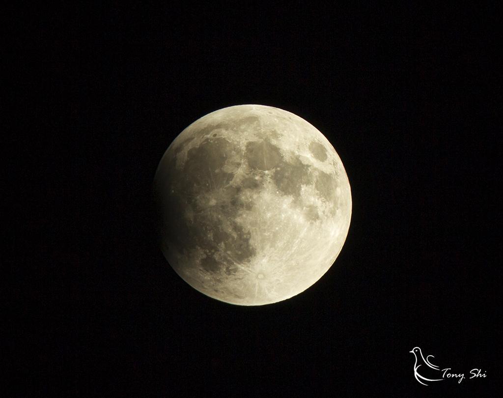 见证天文奇观【超级月亮+月全食】_图1-2