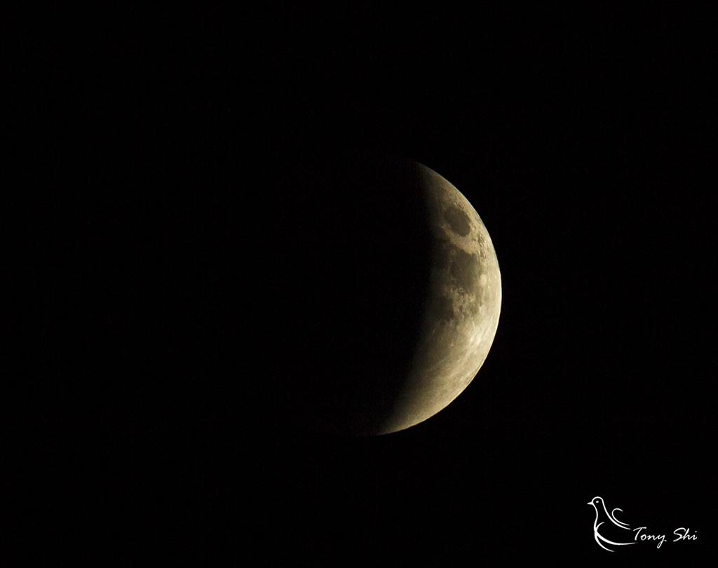 见证天文奇观【超级月亮+月全食】_图1-5